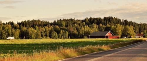 Agroturystyka Rzeszów - Gospodarstwo Agroturystyczne w Rzeszowie